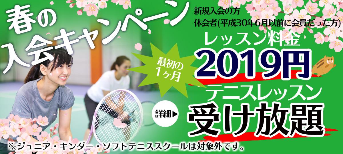 埼玉県草加市のインドアテニススクール レッスン料2019円・レッスン受け放題キャンペーン