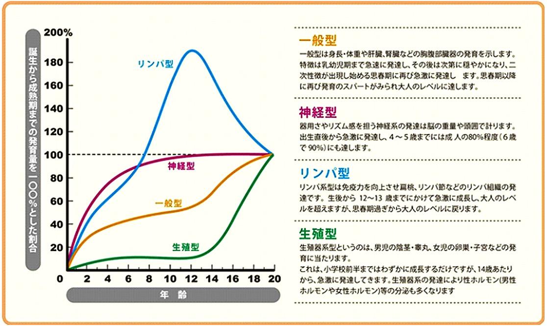 ジュニアの運動能力向上グラフ